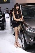 2012第五届中国-东盟(南宁)国际汽车展览会 车模图