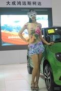 2012烟台车展美女车模鉴赏