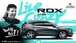 全新RDX实力来袭! 已登陆天津空港特约店
