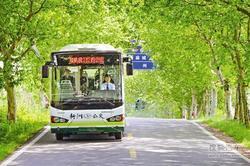 7条线路投入运营 武汉最远城区迎来公交!