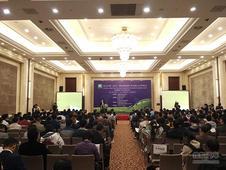 新能源汽车发展与合作峰会在汉成功召开!