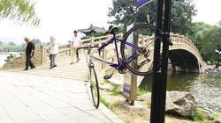 """鞍山:公园里锁辆自行车 为啥不""""挪窝"""""""
