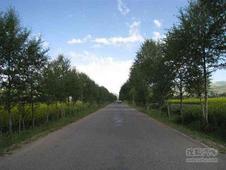 村村通工程 我市共有3962个行政村通油路
