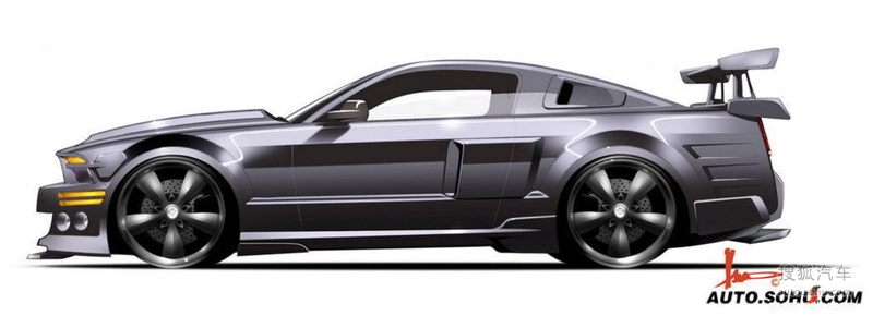 福特进口福特野马2008款福特野马眼镜蛇gt500图片