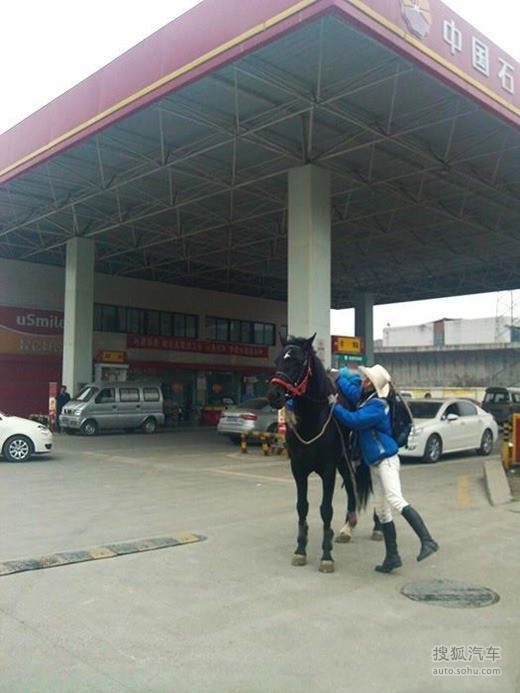 骑马回家_春节回家没票抢 马上哥骑马回家过年-其他图片-搜狐汽车