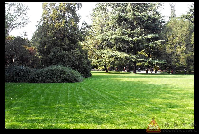 紫竹院公园 1