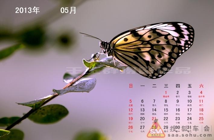 [2013年年历]蝴蝶 - 别克俱乐部