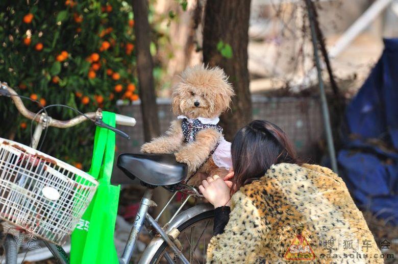 【新春第一聚】南沙大战自驾游广州美食FB团美食解说爱奇艺车友视频老鼠图片