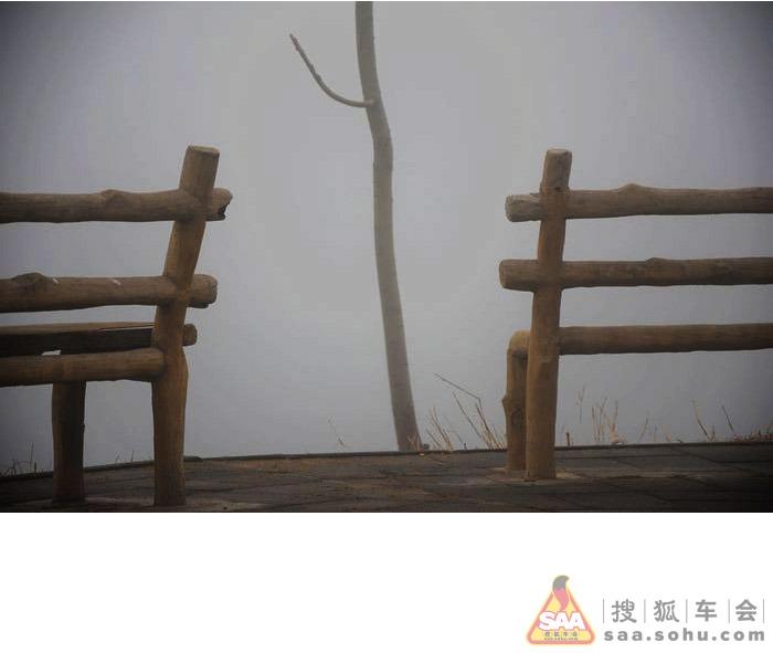 植树慧缘谷 雾锁朝阳寺