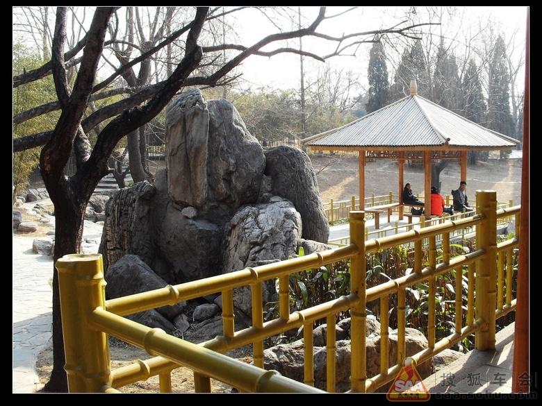 紫竹院公园 4