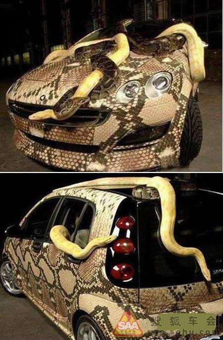 这辆内外皆被蛇皮和假蛇覆盖的汽车,给了一种可怕的外表.